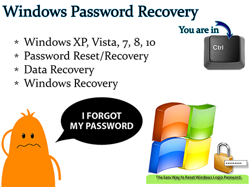 Windows Password Reset and Data Recovery Boot USB
