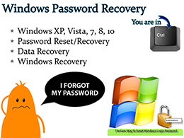 Windows Password Reset and Data Recovery Boot USB Logo thumb
